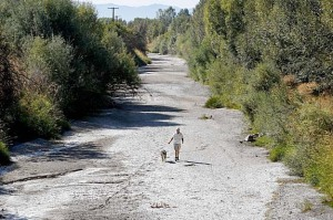 Greg King, President of the Siskyou Land Conservancy, which has fought to protect the Salmon runs on the Klamath River, walks with his dog Wilder in a dry riverbed along the Scott River, a major tributary to the Klamath, on Wednesday September 2, 2009, in Fort Jones, Calif. Photo by Michael Macor/The Chronicle